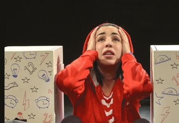 תיאטרון אורנה פורת לילדים ולנוער - אש בראש בישראל